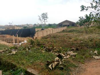 Strategic Commercial Two Plots of Land Suitable for Many Purposes, Near Bravo, Akinnigaun Area, Kuola on Main Akala Express, Ido, Oyo, Commercial Land for Sale
