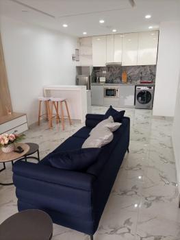 1 Bedroom Apartment, Victoria Island (vi), Lagos, Mini Flat Short Let