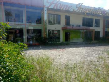 Lovely 6 Bedroom Detached House, Off Adeola Odeku, Victoria Island (vi), Lagos, Restaurant / Bar for Rent