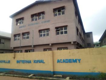Standard Functioning Nursery, Primary / Secondary School, Off Orisunbare Bus-stop, Egbeda, Shasha, Alimosho, Lagos, School for Sale