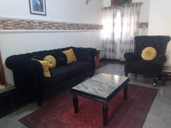 Luxury Furnished and Service 1 Bedroom Terrace, Garki 2, Garki, Abuja, Flat / Apartment for Rent