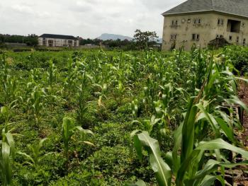Strategically Located Residential Land, Life Camp, Abuja, Land for Sale
