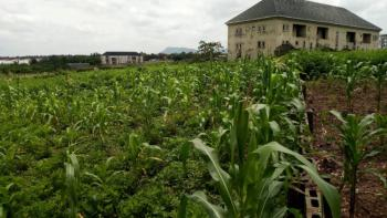 2900sqm Flat and Buildable Land, Before Paradise Estate, Dape, Abuja, Residential Land for Sale