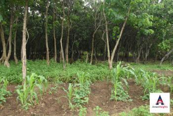 Land, Dakibiyu, Abuja, Residential Land Joint Venture