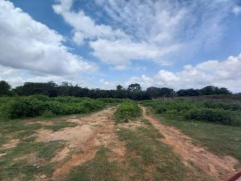 Well Located Dry Land Measuring Approximately 1,500sqm, Mbora (nbora), Abuja, Residential Land for Sale