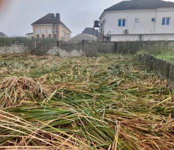 Governors Consent Best Offer Plot, Pearl Garden Estate, Sangotedo, Ajah, Lagos, Land for Sale