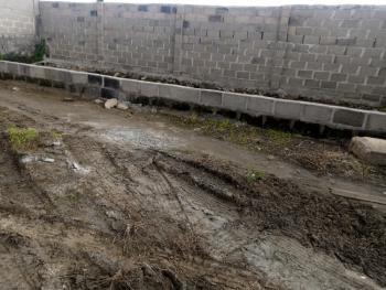 Land, Apapa Oshodi Express Ijesha/sanya, Amuwo Odofin, Lagos, Industrial Land for Sale
