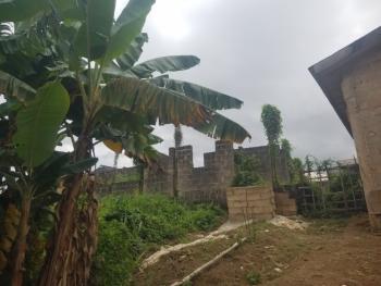 Distress Land, Off Aiyetoro Road,, Ayobo, Lagos, Mixed-use Land for Sale