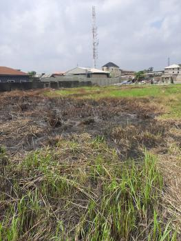 Plots of Land in a Close with Maximum Security, Ago Palace, Isolo, Lagos, Mixed-use Land for Sale