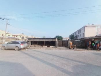 1000m2 Cornerpiece  Facing Express, Lekki Epe Expressway, Lekki, Lagos, Commercial Land for Sale
