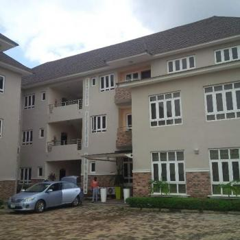 Newly Built & Serviced 2 and 3bedrooms Apartment, Off Olusegun Obasanjo Way, Wuye, Abuja, Flat for Rent