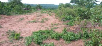 an Acre of Farmland, Epe Road Trip, Agbowa, Ikorodu, Lagos, Mixed-use Land for Sale