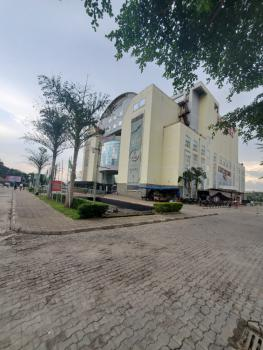 Shopping Plaza, Cadastral Zone, Central Business District, Abuja, Plaza / Complex / Mall for Sale