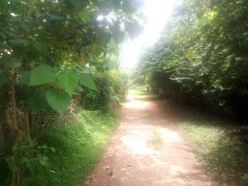 a 5600sqm of Land with Few Buildings in a Serene Environment, Dala Road Ungwar Rimi, Kaduna North, Kaduna, Mixed-use Land for Sale
