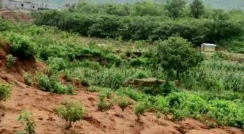 1.5 Hectare of Residential Land, Life Camp, Abuja, Residential Land for Sale