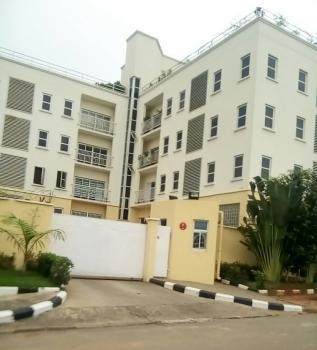 3 Bedroom Flat/apartment, Asokoro District, Abuja, Semi-detached Duplex for Rent