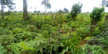 44 Plots of Land, Army Range By Etche, Eneka, Port Harcourt, Rivers, Mixed-use Land for Sale