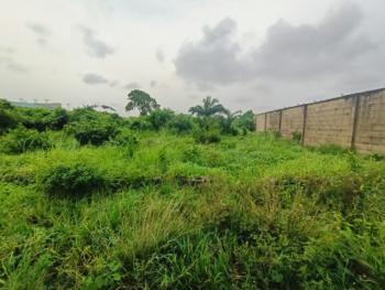 Full Plot of Table and Dry Land, First Court Estate, Olu-odo I, Ebute, Ikorodu, Lagos, Mixed-use Land for Sale