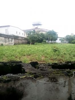 2000 Square Meter Land, Asokoro District, Abuja, Residential Land for Sale
