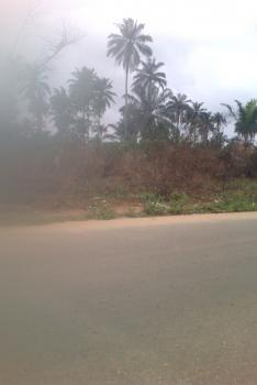 250 Plots, Airport Road, Rukpokwu, Port Harcourt, Rivers, Land for Sale