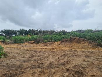 Most Affordable Good Titled Land. 100% Dry Amidst Great Developments, Behind, Lekki Free Trade Zone, Lekki, Lagos, Land for Sale