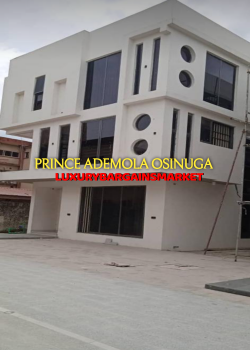 Newly Built 5 Bedroom Semi Detached House, Central Ikoyi, Old Ikoyi, Ikoyi, Lagos, Semi-detached Duplex for Rent
