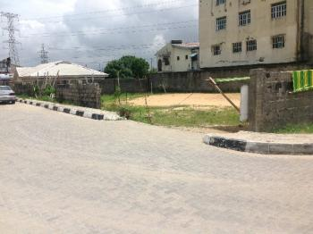 Plots Of Lands For Sale Opposite Chevron Quaters, Chevy View Estate, Lekki, Lagos, Mixed-use Land for Sale