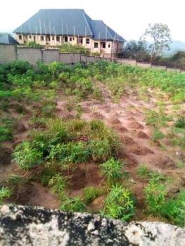 Two Plots of Land Fenced with Gate, Abia State University Uturu, Absu, Isuikwuato, Abia, Land for Sale