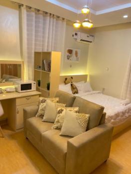 Luxury Studio Apartment, Gra, Enugu, Enugu, Self Contained (single Rooms) Short Let