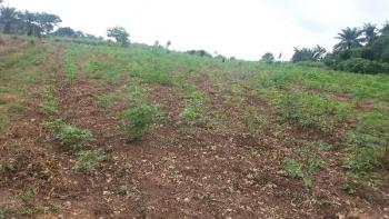 Best Deal! 20 Acres  of Land at Iwo., Oluponna, Iwo., Iwo, Osun, Mixed-use Land for Sale