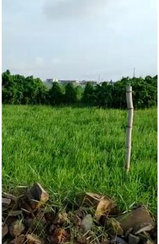 Plots of Dry Land Is Available in a Serene Environment, Ebun Otti Estate, Mende, Maryland, Lagos, Residential Land for Sale