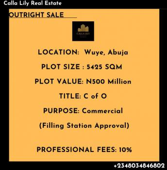 a Good Located Land, Wuye, Abuja, Residential Land for Sale