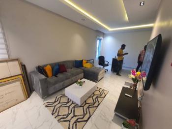 Luxury 2 Bedroom En-suite Apartment, Chisco, Ikate Elegushi, Lekki, Lagos, Flat / Apartment for Rent