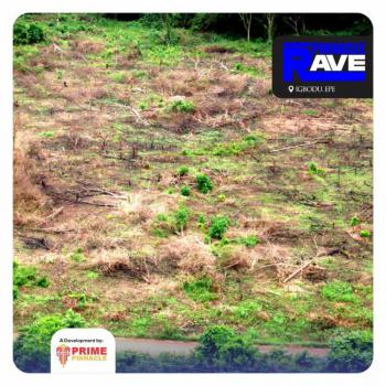 See The Dry Genuine Land People Are Rushing, Igbodu, Epe, Lagos, Residential Land for Sale