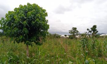3.2 Hectares Multifunctional Land, Layout, Giri, Gwagwalada, Abuja, Mixed-use Land for Sale
