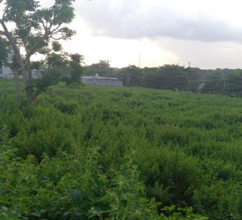 3.5 Hectares Farmland, Giri, Gwagwalada, Abuja, Land for Sale