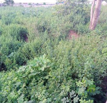 Commercial Land, Zuba (zuba1 Part1 Layout), Gwagwalada, Abuja, Commercial Land for Sale