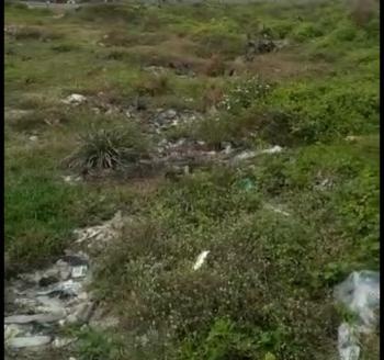 Land, Berry Court, Omole Phase 2 Extension, Ikeja, Lagos, Residential Land for Sale