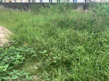Newly Out 668 Sqm of Land, Bera Estate Chevron, Lekki, Lagos, Land for Sale