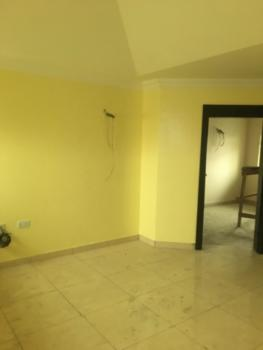 Newly Built Well Finished Luxury Mini Flat in a Penthouse, Fola Agoro, Yaba, Lagos, Mini Flat for Rent