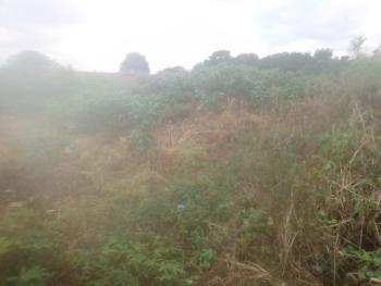 Land, Trans Ekulu, Enugu, Enugu, Land for Sale