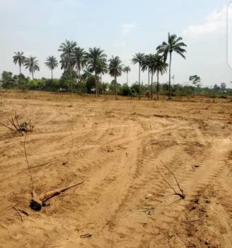 Good Estate Land, Olorunsogo, Oyo, Mixed-use Land for Sale