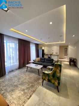 a Fully Furnished High-end  1 Bedroom, Wuse 2, Abuja, Flat / Apartment for Rent