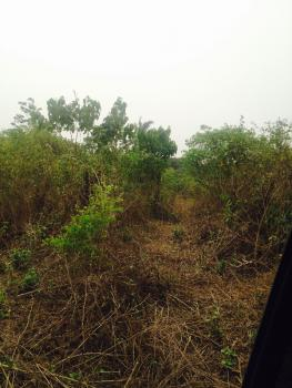 Acres of Agricultural Land, Epe, Lagos, Commercial Land for Sale