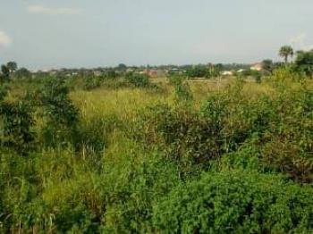 20 Acres of Land, Close to Dominion University, Km 46, Ogun, Mixed-use Land for Sale