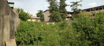 Nice Empty Plot of Land, Off Adeniran Ogunsanya, Adeniran Ogunsanya, Surulere, Lagos, Residential Land for Sale