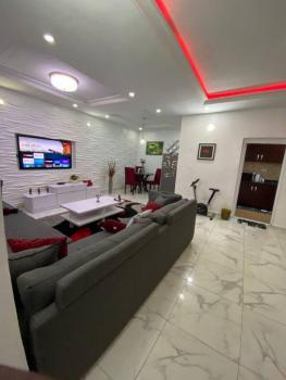 Luxurious 2 Bedroom Fully Furnished Apartment, Ikate, Lekki, Lagos, Flat / Apartment for Sale