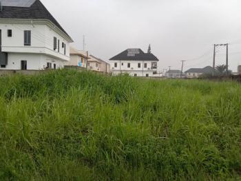 Dry Luxury Land 400sqm, Eden Garden Estate, Ajah, Lagos, Residential Land for Sale