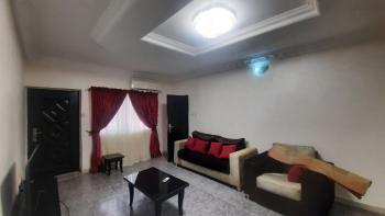 Tastefully Finished 2-bedroom Apartment, Asokoro District, Abuja, Flat / Apartment for Rent