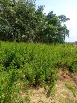 Distress Land 1607sqm, Jahi, Abuja, Residential Land for Sale